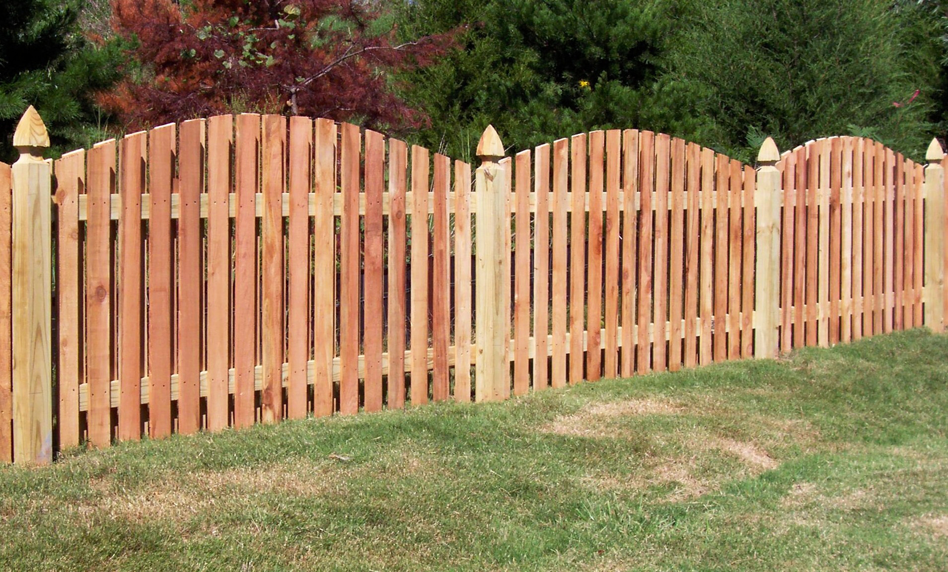 as well as fence repair building we offer other garden services